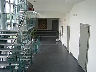 Hloubkové čištění podlah 9