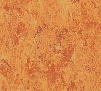 Tarkett Veneto xf 3.2 mm Amber 636