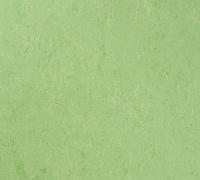 Tarkett Veneto xf 2.5mm Apple green 754
