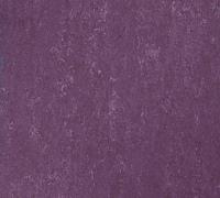 Tarkett Veneto xf 2.5mm Begonia 742