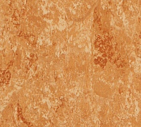 Tarkett Veneto xf 2.5mm Copper 634