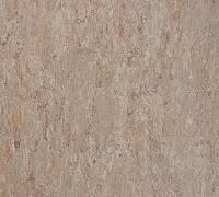 Tarkett Veneto xf 2.5mm Fossil 502