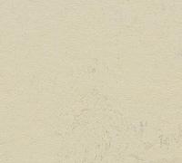 Marmoleum home H80 tl. 2,5mm