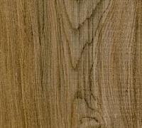 Experto Click Nordic Maple