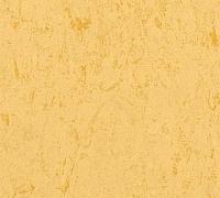 Terkett Veneto xf 2.5mm 1872612
