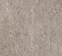 Tarkett Veneto xf 2.5mm Taupe dark 741